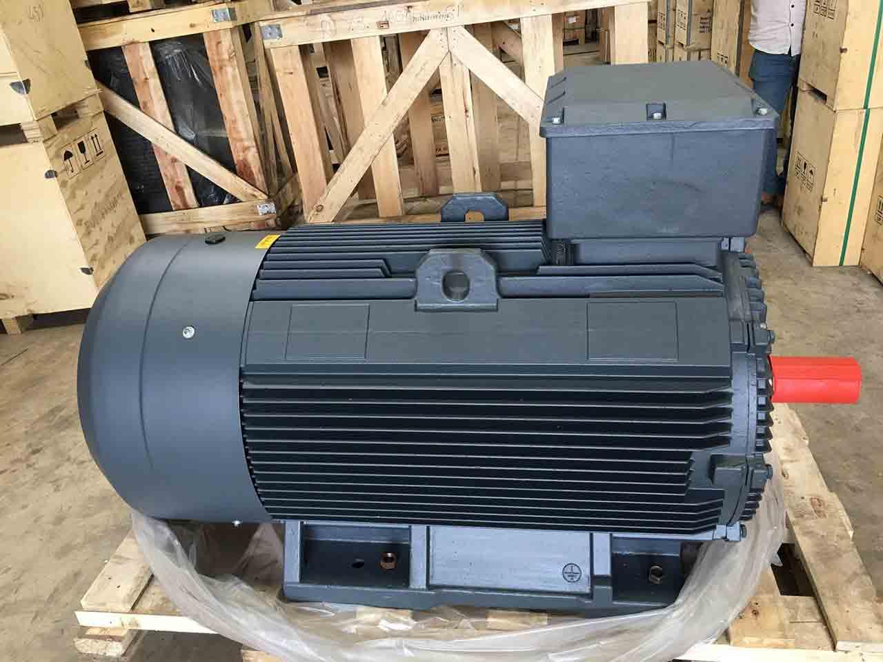Motor điện 75 kw chân đế 3 pha