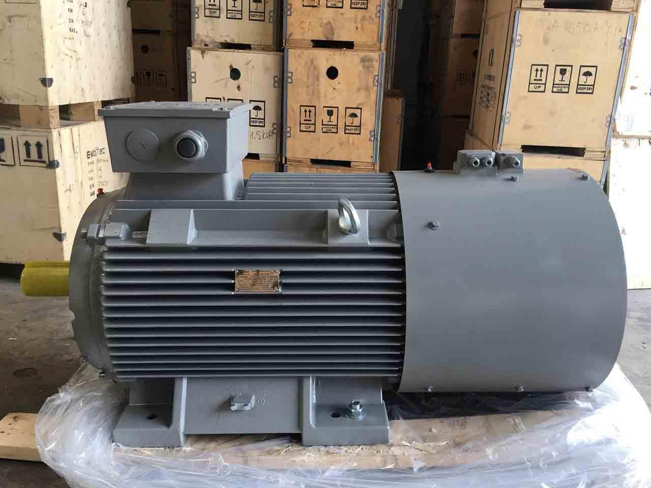 motor động cơ điện Siemens